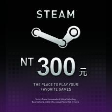 Steam爭氣卡 NT 300
